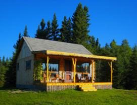Fiddlehead Cabin